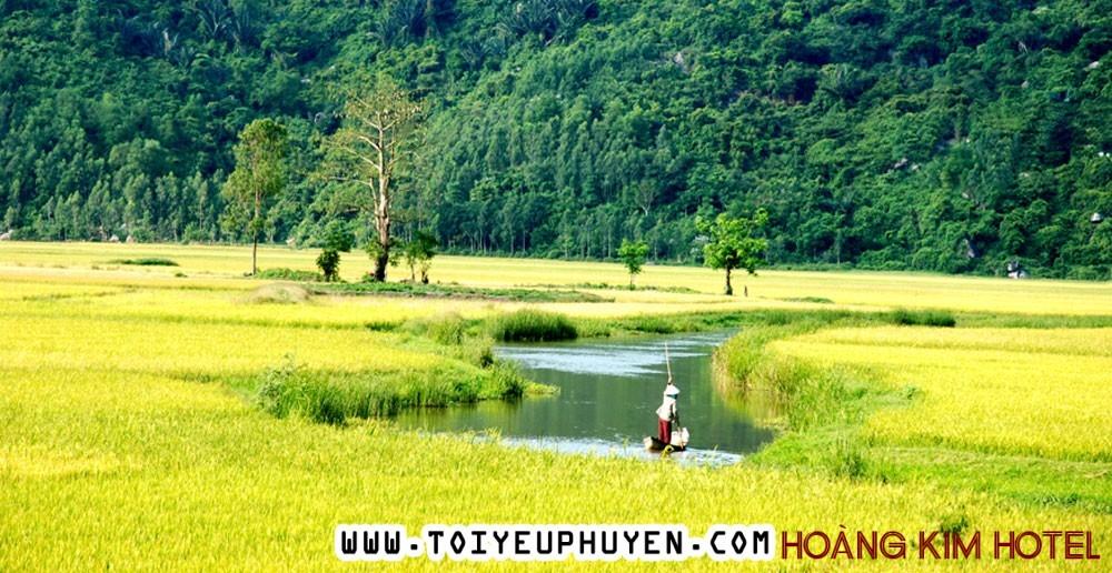 Phú Yên - Tuổi thơ yên bình trên đồng lúa